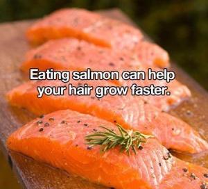salmon hack